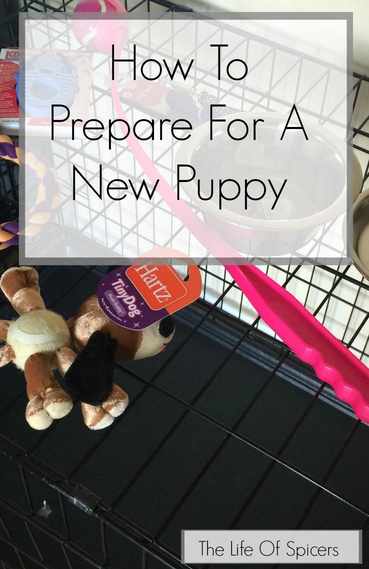 prepare for a new puppy