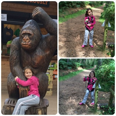 What To Expect When Visiting Go Ape