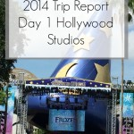 Disney World Florida 2014 Holiday Day 1 Hollywood Studios