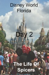 disney day 2 pinterest