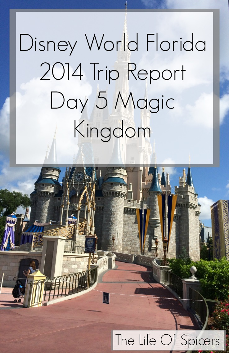 Disney World Florida 2014 Holiday Day 5 Magic Kingdom