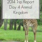 Disney World Florida 2014 Holiday Day 4 Animal Kingdom