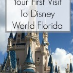 Top Ten Tips For Your First Visit To Disney World Florida