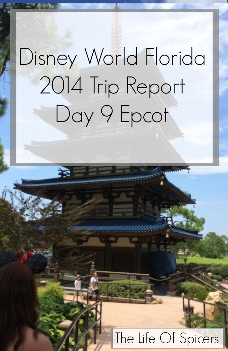 Disney World Florida 2014 Holiday Day 9 Epcot