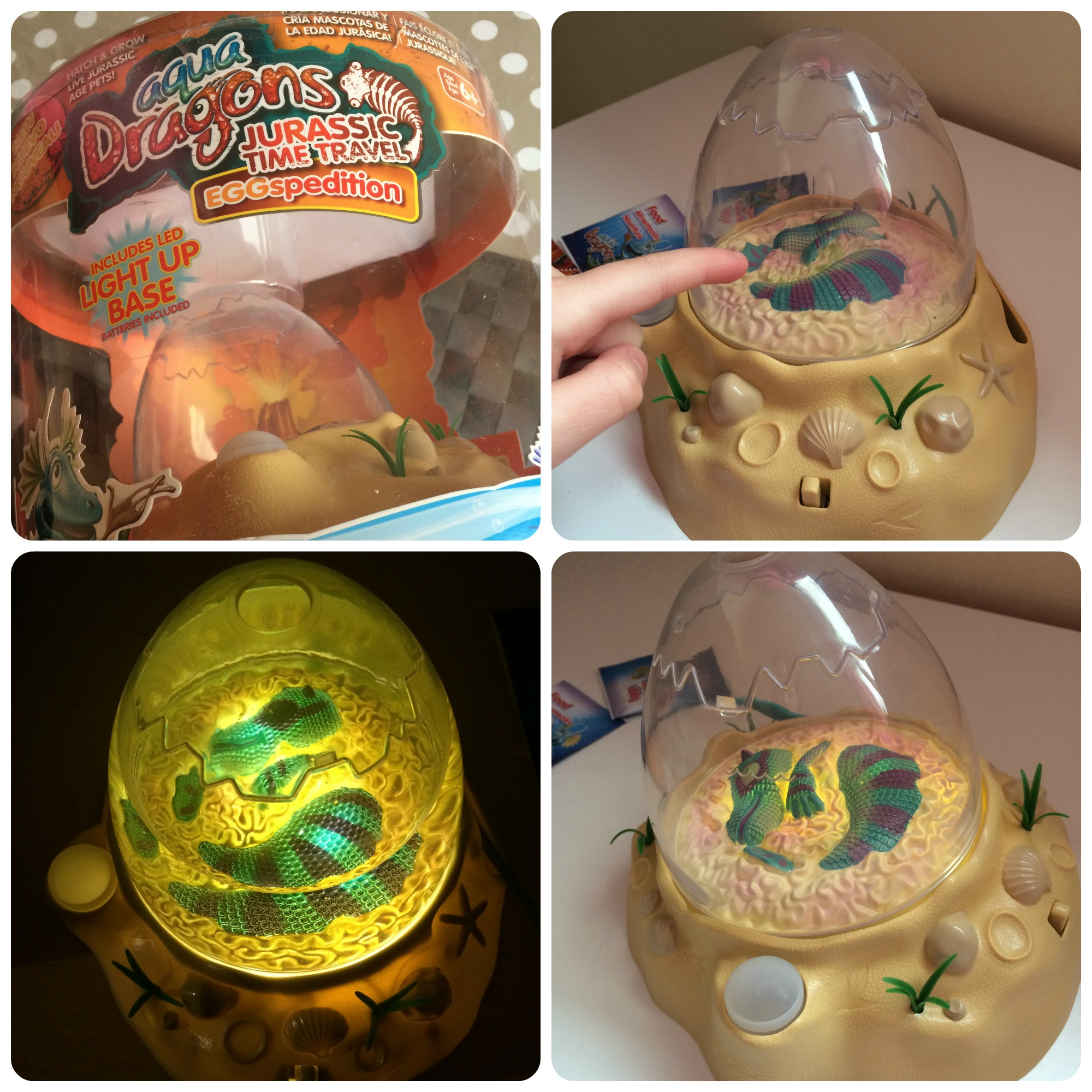 Aqua Dragons Jurassic Time Travel Review - The Life Of Spicers