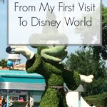 What I Learned From My First Visit To Disney World