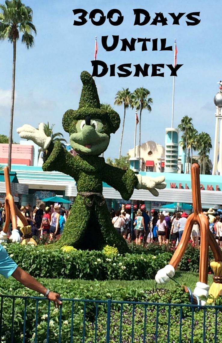 300 Days Until Disney