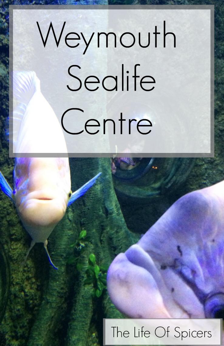 weymouth sealife