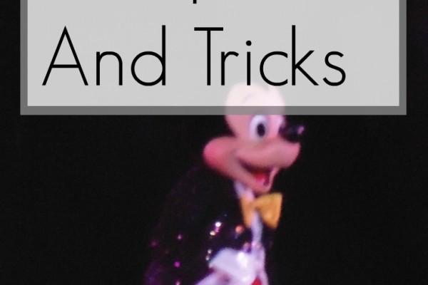 Fantasmic Tips And Tricks