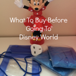 What To Buy Before Going To DisneyWorld