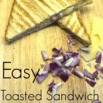Easy Toasted Sandwich Ideas