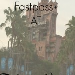 What To Fastpass+ At Disney World