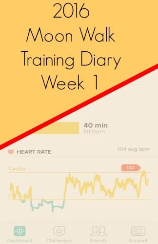 Moon Walk Training Diary