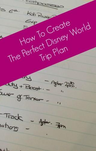 perfect disney world plan