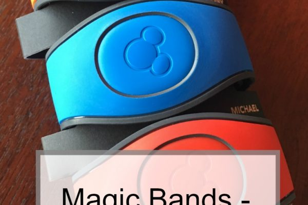 Disney Magic Bands – What You Need To Know