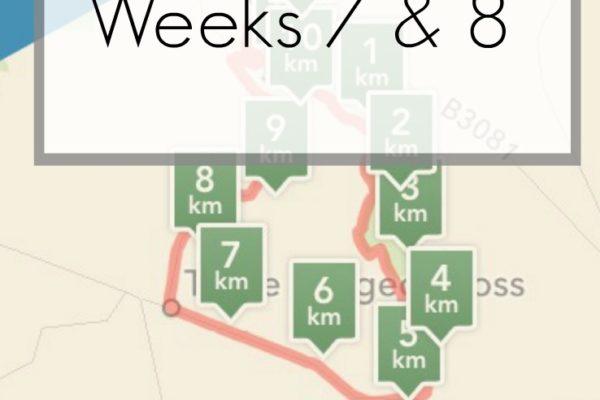 Moon Walk Training Diary Weeks 7 & 8