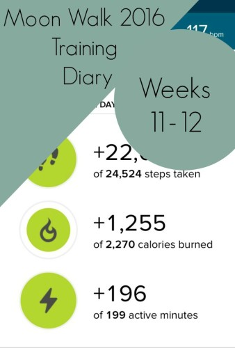 moonwalk diary 11 and 12