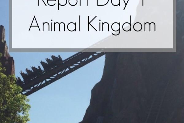 Disney World 2016 Diary – Animal Kingdom Day 1