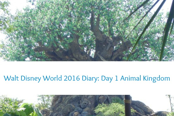 Disney World 2016 Diary – Animal Kingdom Day 1
