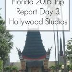 Disney World 2016 Diary – Hollywood Studios Day 3