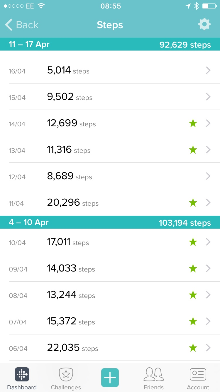Fitbit steps at Disney World