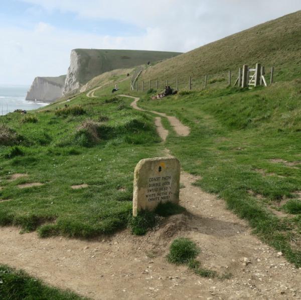 coastal path from Lulworth to Durdle Door