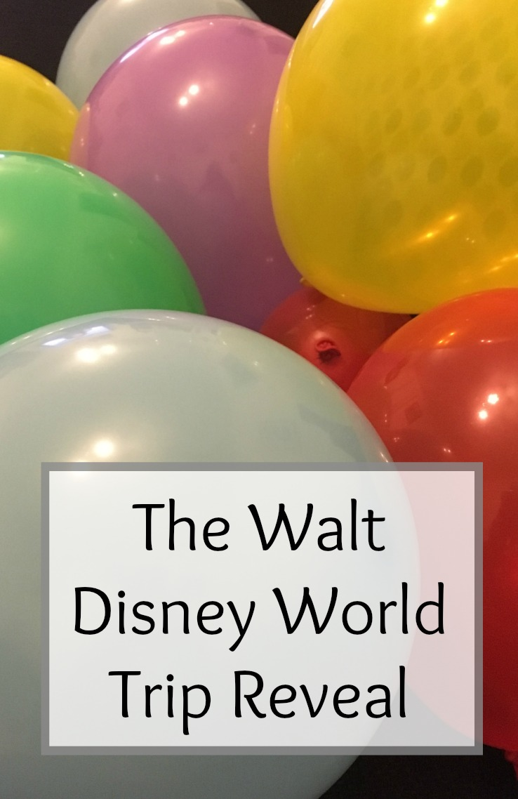 The Walt Disney World Trip Reveal 2017