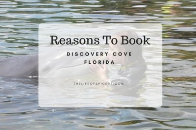 10 Reasons To Book Discovery Cove Orlando