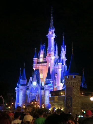 magic kingdom castle at night