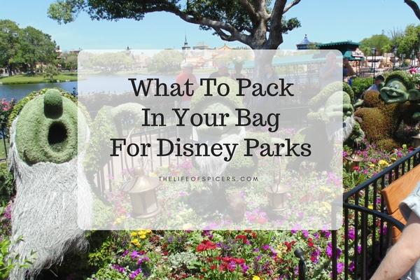 What To Pack In Your Disney Day Bag