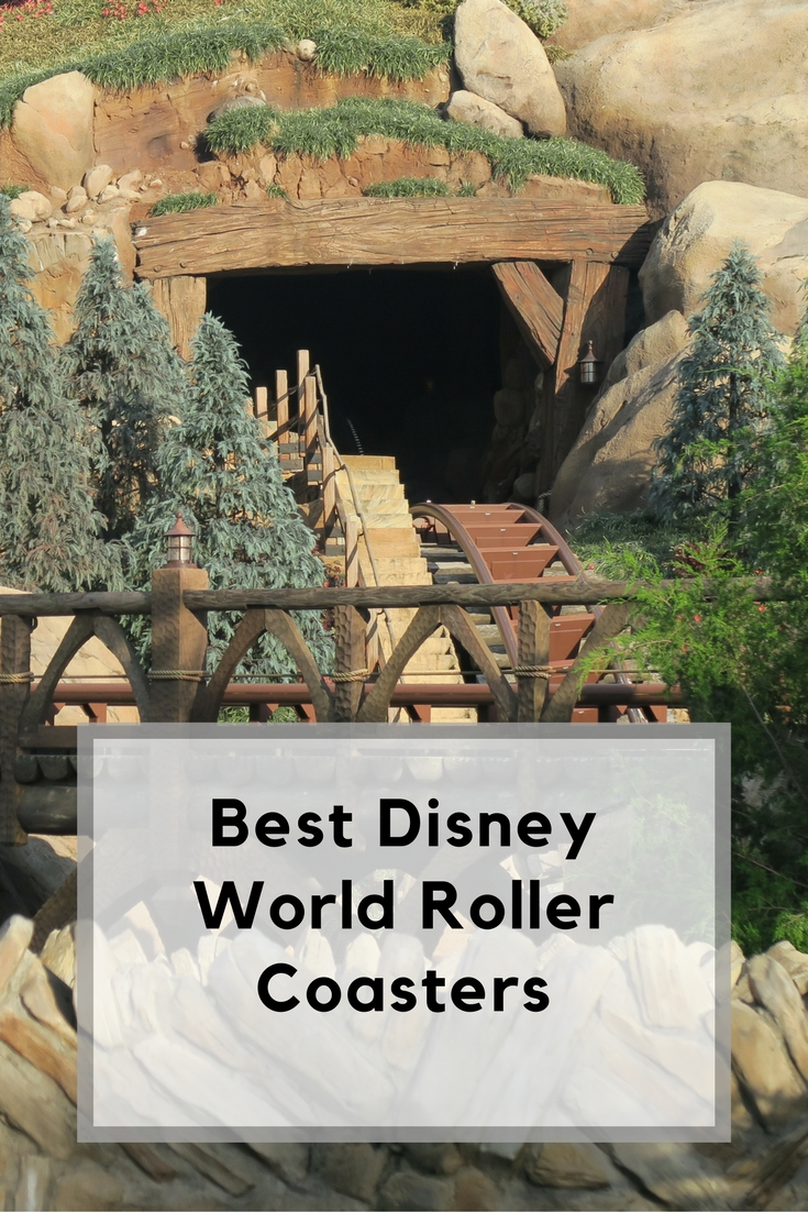 Disney World Roller Coasters