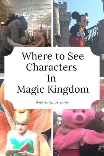 magic kingdom characters