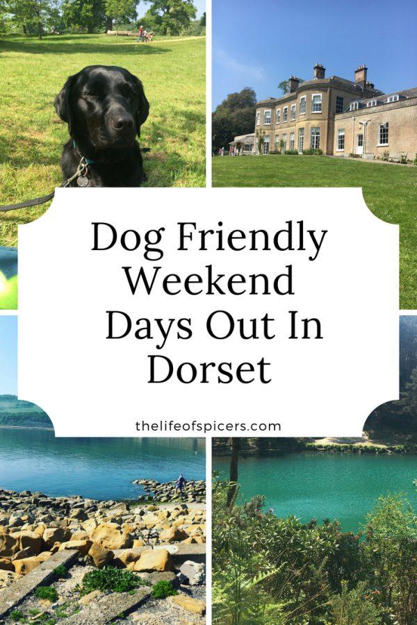 weekend adventure in Dorset