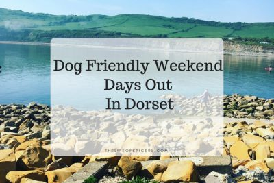 Our Weekend Adventure In Dorset With Lola