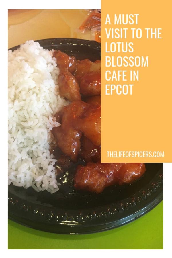 Lotus Blossom Cafe Epcot