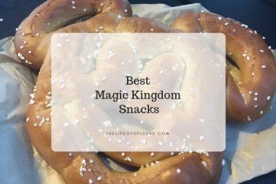 Best Magic Kingdom Snacks