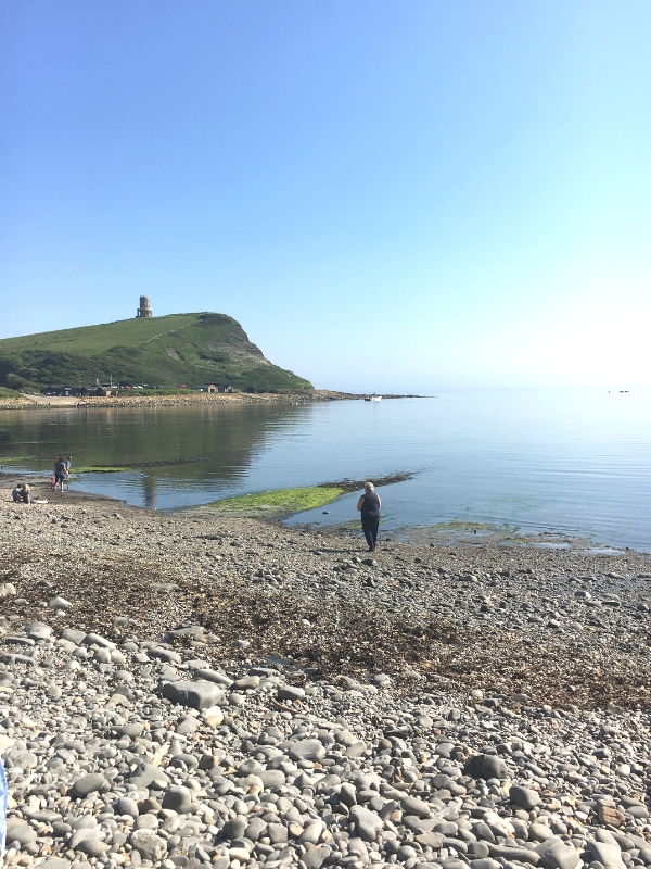 Dog Friendly Attractions In Dorset - Kimmeridge Bay