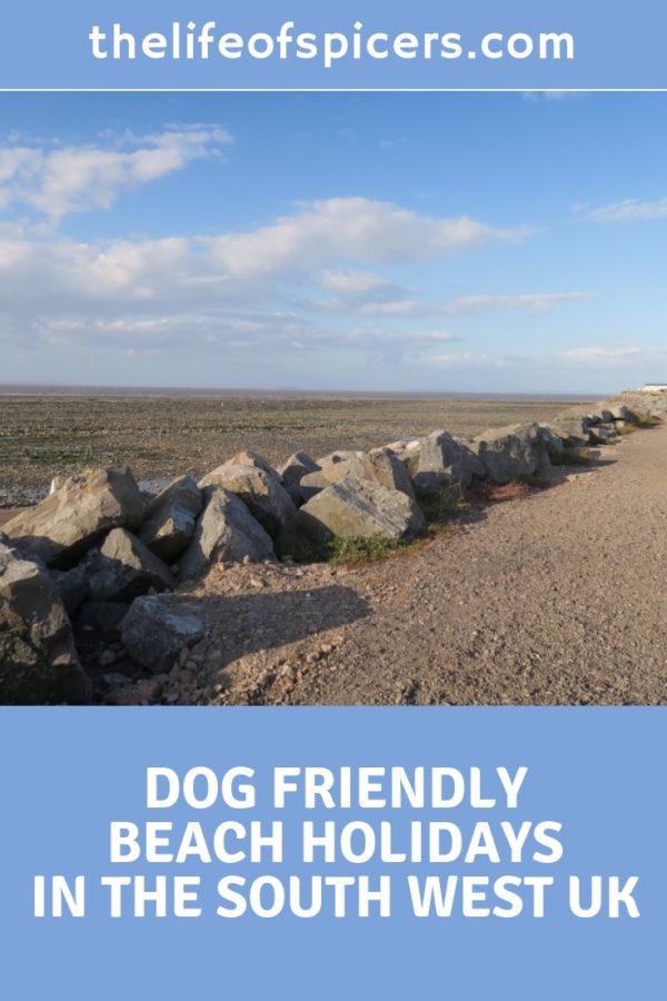 dog friendly beach holidays