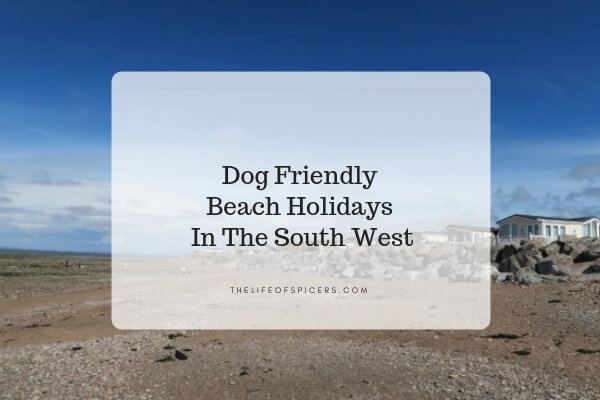 Dog Friendly Beach Holidays In The South West