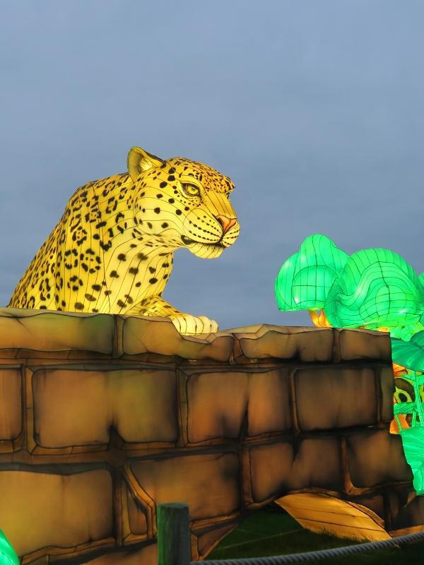 Longleat Festival Of Light leopard