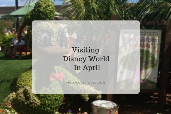 Visiting Disney World In April