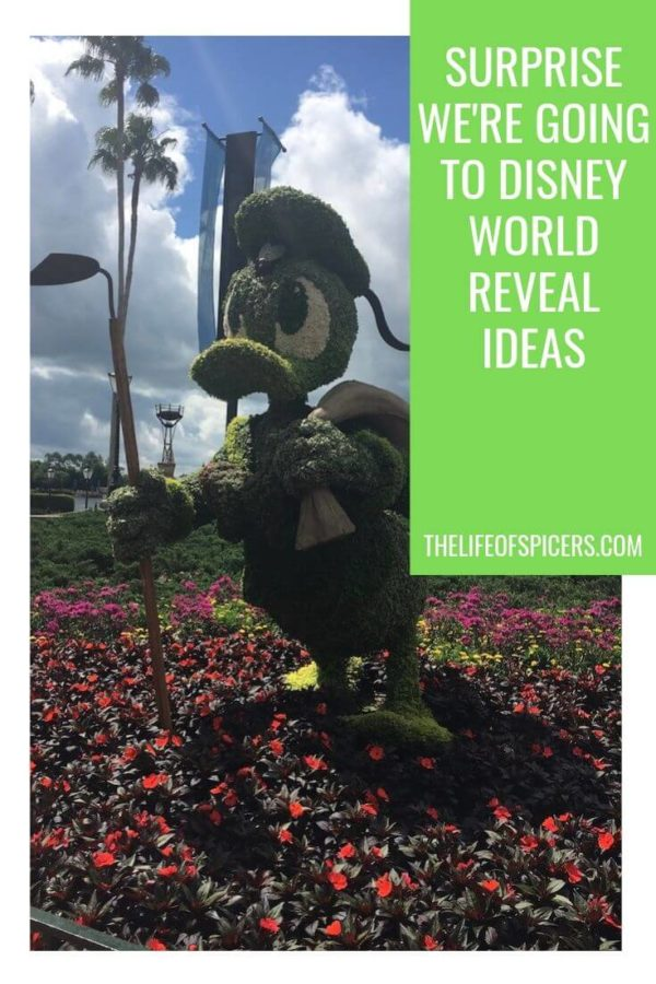 surprise we're going to disney world ideas