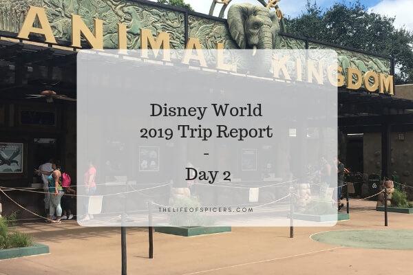 disney world trip report